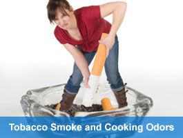 Remove Tobacco Smoke and Cooking Odors with Odor Medicine S.F.F.  Concentrate (Smoke & Food Formula)