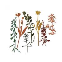 Sizzix Thinlits Die Set Tim Holtz - Wildflowers #2 661808
