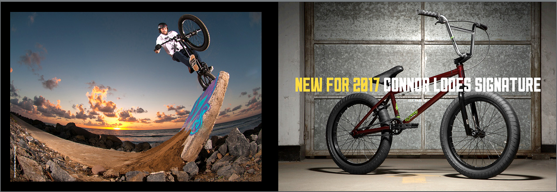 Check out the 2017 Kink BMX Bikes at Albe's BMX