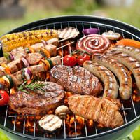 Bison grilling meats