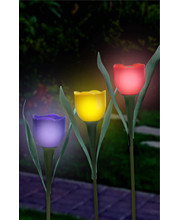 Set of 3 SOLAR POWERED TULIPS no battery needed