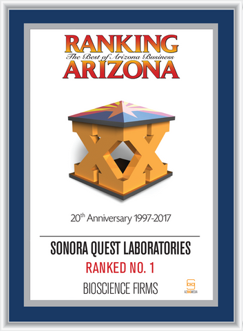 Ranking Arizona Plaque Style D:  Ranking 17  Cover- Blue with silver trim.  Plaque states Company Name, Ranking Status, Category.  (Ranking status can read: Ranked Top Ten; Ranked #1; Ranked The Best of Arizona Business - Please state preference in the comment box)