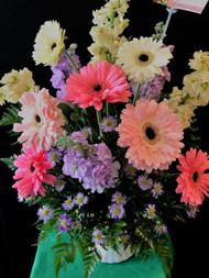 Beautiful spring mixture of heavenly stock and large gerbera daisies