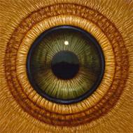 Eye 138