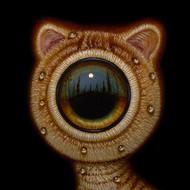 Eye 09