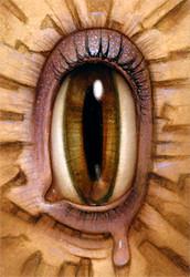 Eye 092