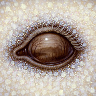 Eye 103