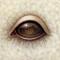 Eye 096
