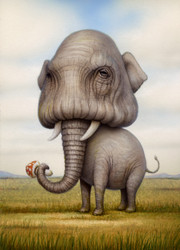 ShroomElephant