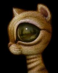 EyeCat 05