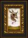 Lucid Dreamer 11 framed