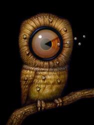 REM Watcher 02