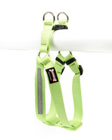 Smoochy Poochy Step-In Harness - Mint