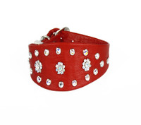"Sit Up ""n"" Beg - Hampton Collar - Red"