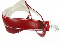 Amberhill Leash - Red