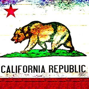 Cali Republic // CA083