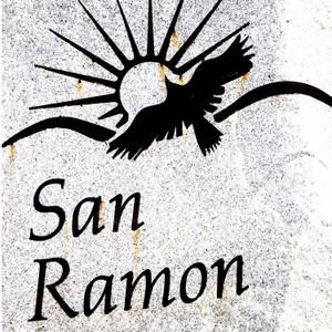 San Ramon Eagle // CA114