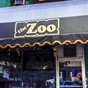 The Zoo // NE027