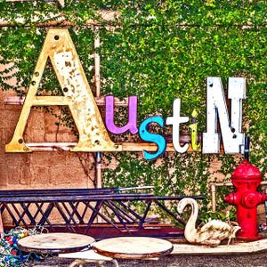 Swan Austin // ATX166
