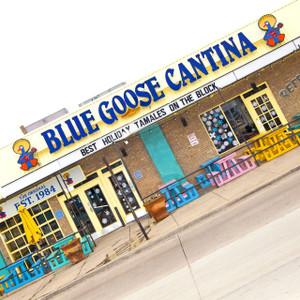 Blue Goose Cantina // DTX318