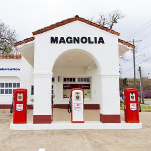 Magnolia // LR059