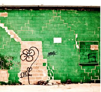 Green Sunflower - coaster