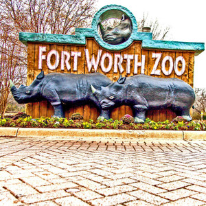 Fort Worth Zoo // FTX334