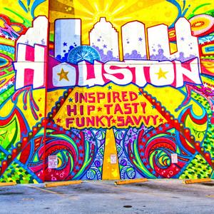 Houston Inspired // HTX001