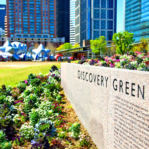 Discovery Green Day // HTX051