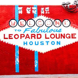 Leopard Lounge // HTX086