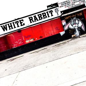 White Rabbit // SA035