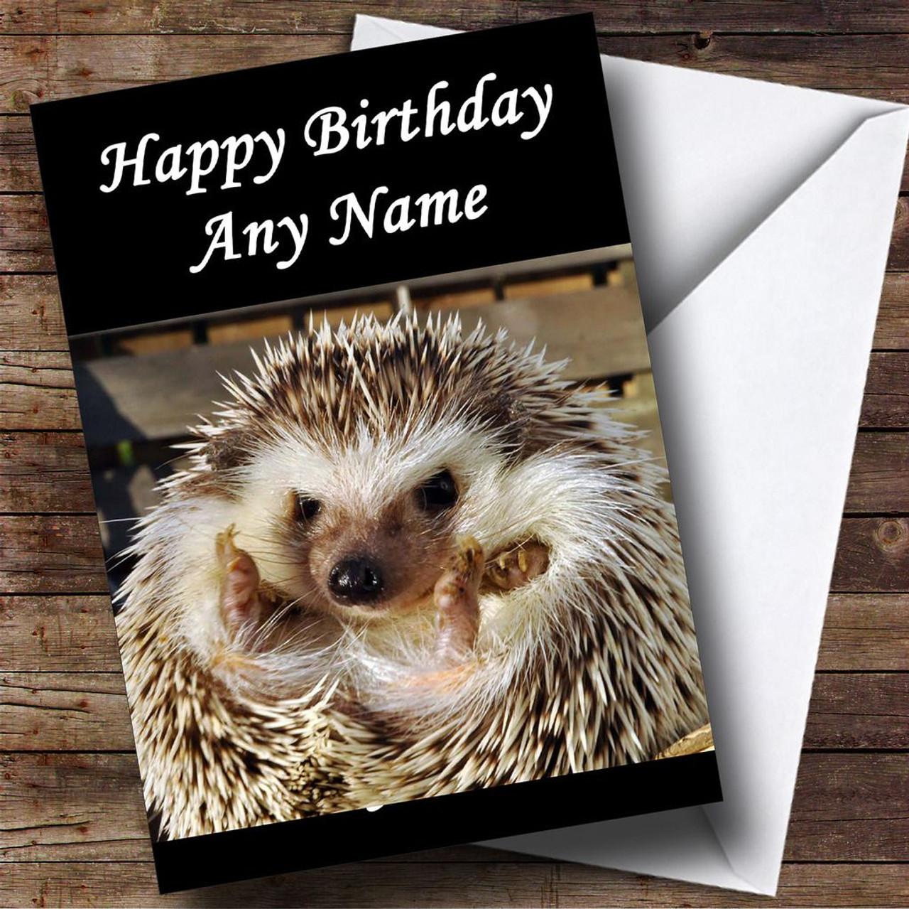 Cute birthday hedgehog