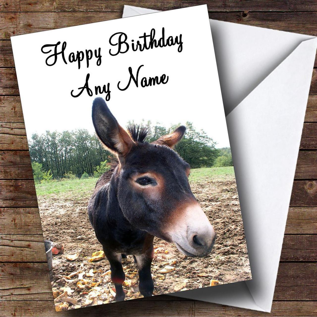 Donkey Personalised Birthday Card The Card Zoo – Donkey Birthday Card