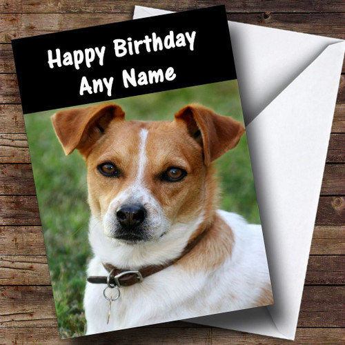 Jack Russell Dog Personalised Birthday Card