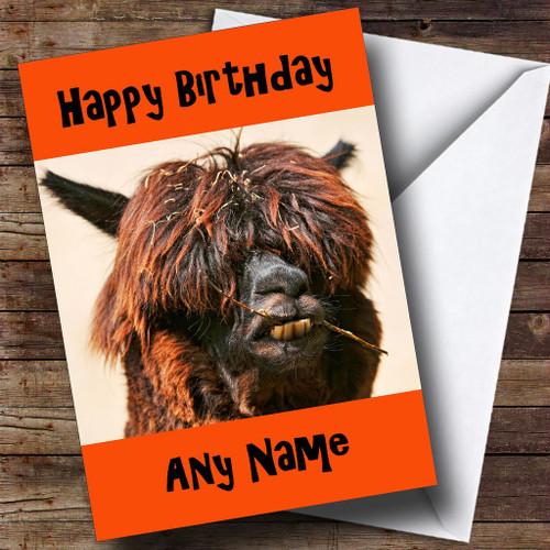 Funny Scruffy Llama Personalised Birthday Card The Card Zoo