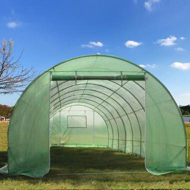 Image 1 & 26u0027x10u0027 B2 Walk-in Greenhouse