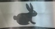 Bunny Overlay