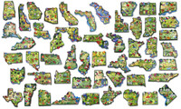 51-Piece Complete Artwood State Magnet Set