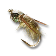 Rainy's Water Boatman - #12