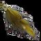 Fish Skullpin Bunny - Olive #4