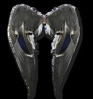 Matched Mallard Wings