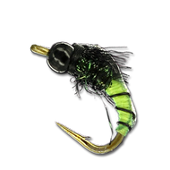 TB Splatte Roller - #16