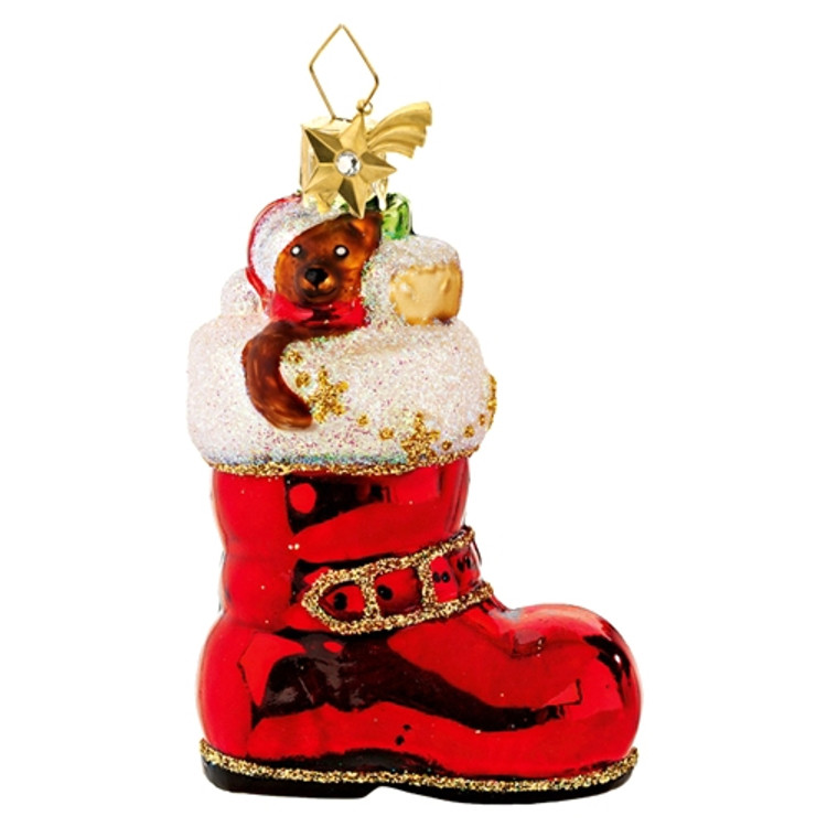 Cat Hiding in Santa's Boot