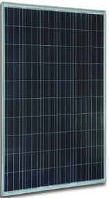 Jetion JT245PCe 245 Watt Solar Panel Module image