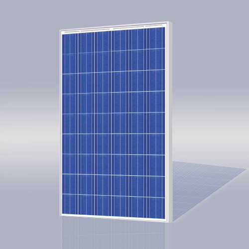 Risen Energy SYP200P 200 Watt Solar Panel Module image