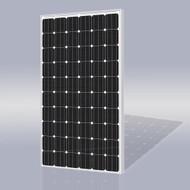 Risen Energy SYP240M 240 Watt Solar Panel Module image