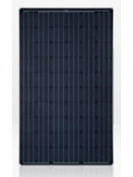 Solar World SW-250-M-AB 250 Watt Solar Panel Module image