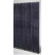 Sunrise SR-M660260 260 Watt Solar Panel Module image