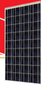 Sunrise SR-P636 130 Watt Solar Panel Module image