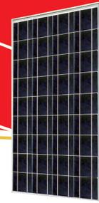 Sunrise SR-P636 145 Watt Solar Panel Module image